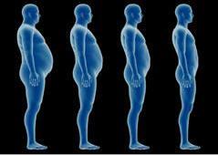 ~~~~WeightLoss1