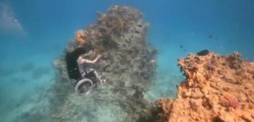 !!!!!WheelChairDiving!