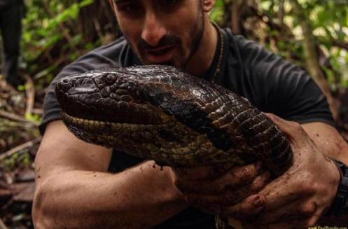 !!!!!Anaconda1